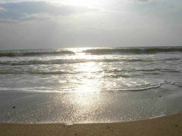 Чёрное море в Крыму море, солнце, пляж. Отличный отдых.